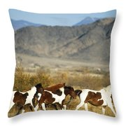 Mustangs Throw Pillow by Mark Newman and Photo Researchers