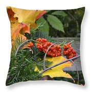 My Bittersweet Fall Throw Pillow by Mary Machare