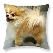 My Name Is Precious Throw Pillow by Randall Weidner