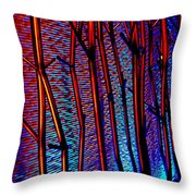 My Vegas Mandalay 9 Throw Pillow by Randall Weidner