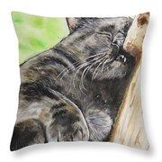 Nap Time Throw Pillow by Carol Blackhurst