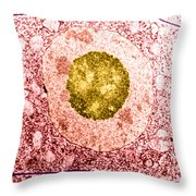 Normal Cell Throw Pillow by Science Source