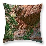 Oak Creek Canyon Walls Throw Pillow by Dave Dilli