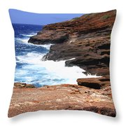 Oceans Beauty Throw Pillow by Cheryl Young