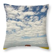 Old Abandoned Red Barn In The Midst Throw Pillow by Robert Postma