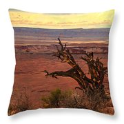 Old One Throw Pillow by Robert Bales