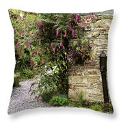 Old Water Pump, Ram House Garden, Co Throw Pillow by The Irish Image Collection
