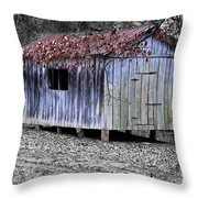 Old Weathered Shed Throw Pillow by Betty LaRue