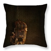 Old Wooden Bird Cage With Feathers Throw Pillow by Sandra Cunningham