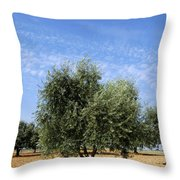 Olive Tree In Provence Throw Pillow by Bernard Jaubert