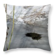 On The River. Heart In Ice 02 Throw Pillow by Ausra Paulauskaite