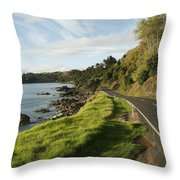 On The Road Around The Coromandel Throw Pillow by Dawn Kish