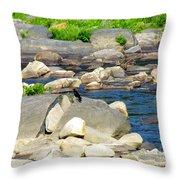 On The Rock Throw Pillow by Randi Shenkman