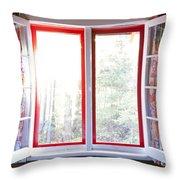 Open window in cottage Throw Pillow by Elena Elisseeva