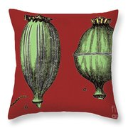 Opium Harvesting Throw Pillow by Science Source