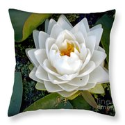 Optical Illusion In A Waterlily Throw Pillow by Kaye Menner