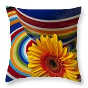 Orange Daisy With Plate And Vase Throw Pillow by Garry Gay