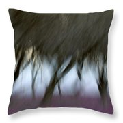 Orchard In Springtime Throw Pillow by Carol Leigh
