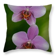 Orchid Delight Throw Pillow by Adele Moscaritolo