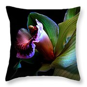 Orchid Gem Throw Pillow by Shirley Sirois