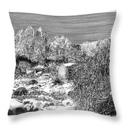 Organ Mountain Wintertime Throw Pillow by Jack Pumphrey