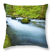 Out of the Rainforest Throw Pillow by Mike  Dawson