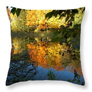 Out Of The Woods Throw Pillow by LeeAnn McLaneGoetz McLaneGoetzStudioLLCcom