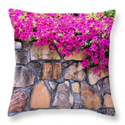 Over The Wall Throw Pillow by Jan Amiss Photography