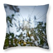 Pablo's Web Throw Pillow by Gwyn Newcombe