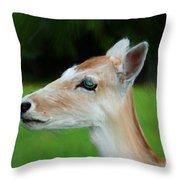 Painted Deer Throw Pillow by Mariola Bitner