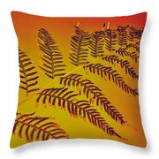Palm Frond In The Summer Heat Throw Pillow by Kaye Menner