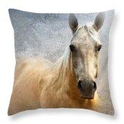 Palomino Throw Pillow by Betty LaRue
