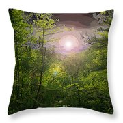 Paradise At Dawn Throw Pillow by Nina Fosdick