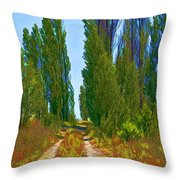 Paradise Road Throw Pillow by Randall Nyhof