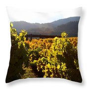 Passage Through The Old Vineyard Throw Pillow by Wingsdomain Art and Photography
