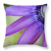 Passiflora Caerulea Throw Pillow by Melanie Moraga