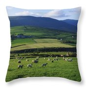 Pastoral Scene Near Anascual, Dingle Throw Pillow by The Irish Image Collection