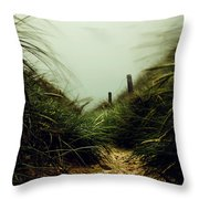 Path Through The Dunes Throw Pillow by Hannes Cmarits