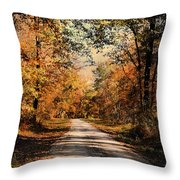Path To Nowhere Throw Pillow by Jai Johnson