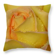 Peace Rose Throw Pillow by Nicola Butt