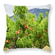 Peaches on tree Throw Pillow by Elena Elisseeva