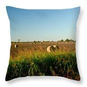 Peanut Bales In Field Throw Pillow by Douglas Barnett
