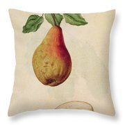Pear   Pyrus Communis Throw Pillow by J le Moyne de Morgues