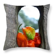 Peppered Fence Throw Pillow by Lauri Novak