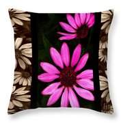 Petal Collage Throw Pillow by Cheryl Young