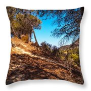 Pine Trees In El Chorro. Spain Throw Pillow by Jenny Rainbow