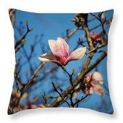 Pink Magnolia Flower Throw Pillow by Jai Johnson