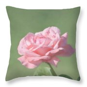 Pink Rose Throw Pillow by Kim Hojnacki