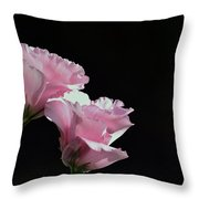 Pink Roses Throw Pillow by Lisa Plymell