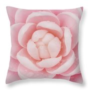 Pink Up Close and Personal Throw Pillow by Rich Franco